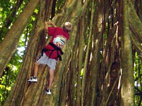 climbing_prev_01